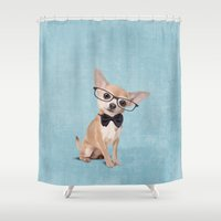 chihuahua Shower Curtains featuring Mr. Chihuahua by Roberta Jean Pharelli