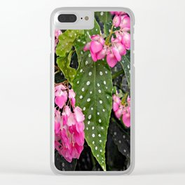 DROOPING PINK BEGONIA FLOWER SPRAYS ON BLACK Clear iPhone Case