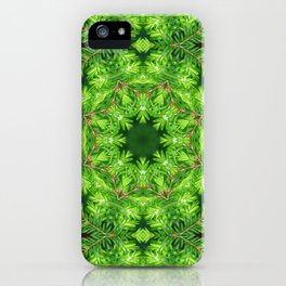 Spring green Canadian Hemlock mandala iPhone Case