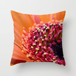 Orange Germini. Throw Pillow