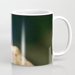 Amano shrimp 2 Coffee Mug
