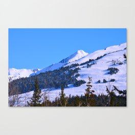Back-Country Skiing  - IV Canvas Print