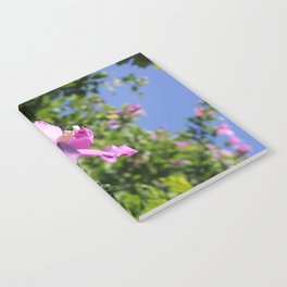 Rose of Sharon Notebook