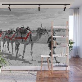 Geelong Camel Walk Wall Mural