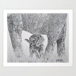 Baby Elephant under Mother Art Print