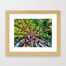 Big Tree Framed Art Print