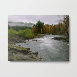 The Wilson River In The Tillamook National Forest Metal Print