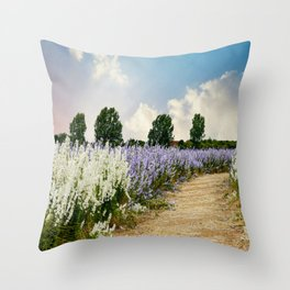 Coloured Landscape Throw Pillow