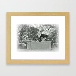Lily in Arcadia ( 2) Framed Art Print