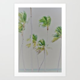 balmy Art Print