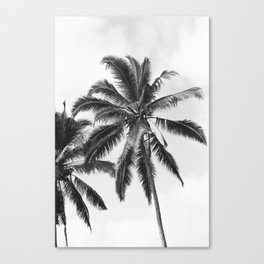 Bali Palm Canvas Print
