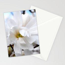 Magnolia 2 Stationery Cards