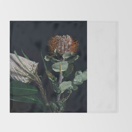 Banksia Flowers Throw Blanket