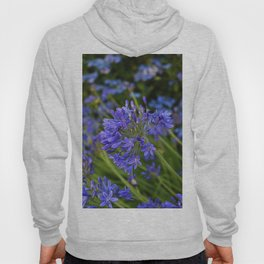 A Simple Blue Hoody