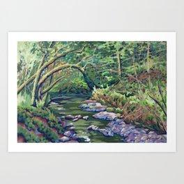 Lazy River at Dun na Ri Art Print