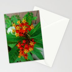 Orange and Yellow Flowers Stationery Cards