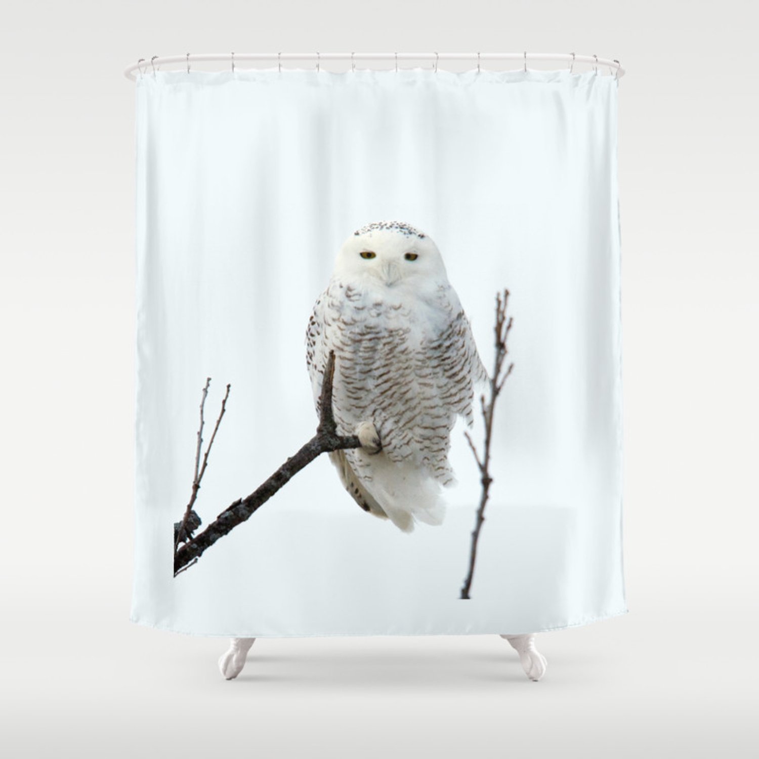 Snowy In The Wind Snowy Owl Shower Curtain