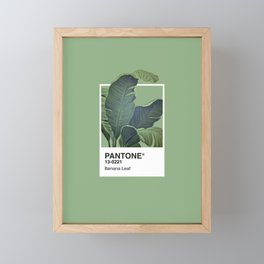 Pantone Series – Banana Leaf Framed Mini Art Print