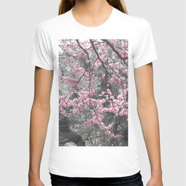 Under The Redbud Tree T-shirt