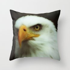 MM - Bald eagle portrait Throw Pillow