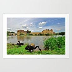 Black Swans at Leeds Castle I Art Print