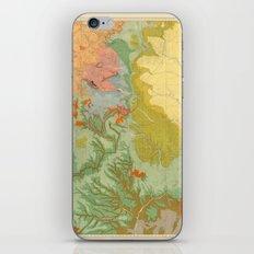Vintage Southwest Map iPhone Skin