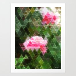 Pink Roses in Anzures 5 Art Triangles 2 Art Print