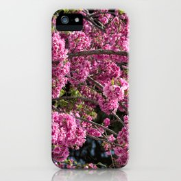 Beautiful pink flowers iPhone Case