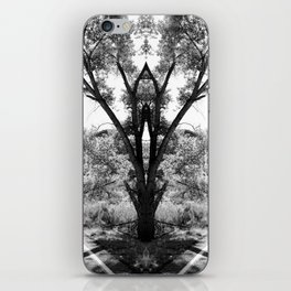 Magical Tree in the Road iPhone Skin