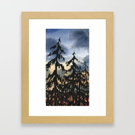 Pines at Dusk Framed Art Print