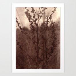 Meditation on Autumn_brown vintage style Van Dyke print Art Print