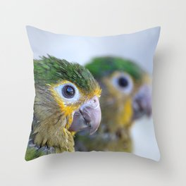 Brown-throated parakeet  Throw Pillow