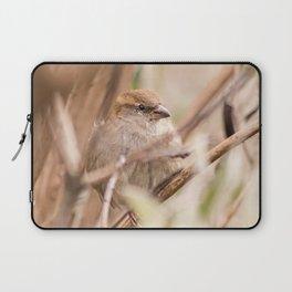 sparrow bird in the tress Laptop Sleeve