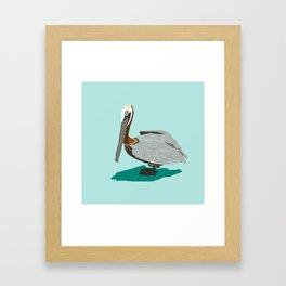Mr. Pelican Framed Art Print
