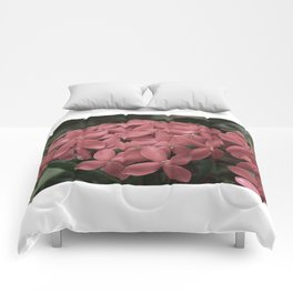 Jungle Flame Comforters
