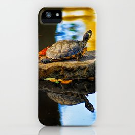 Turtle on the stone iPhone Case