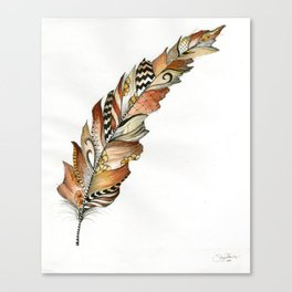 Fall Feather  Canvas Print