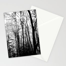 Thetford Woodland in Autumn Stationery Cards