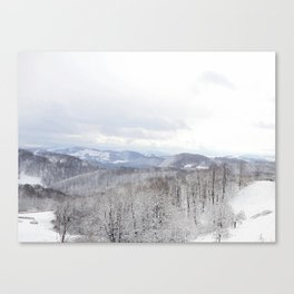 Winter in Transylvania Canvas Print