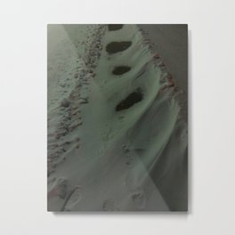Place Snow In My Path Metal Print