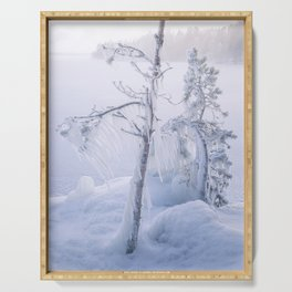 Frozen trees and fog Serving Tray