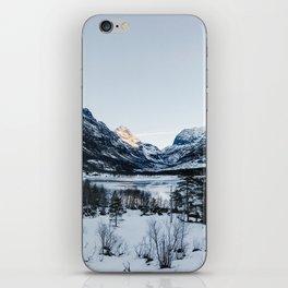 Fantastic Norway iPhone Skin