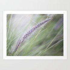 Wild Grass Art Print