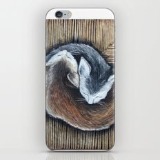 Cats rest iPhone & iPod Skin