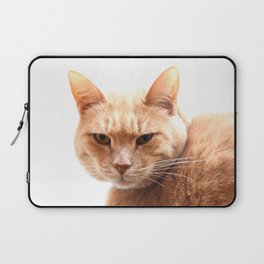 Red cat watching Laptop Sleeve