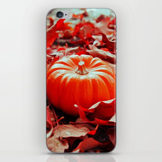 Autumn details iPhone Skin