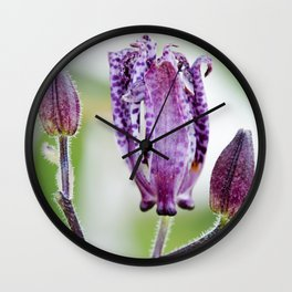 Toad Lily Bud to Bloom Wall Clock
