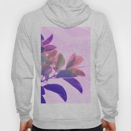 Elegant Tropical Rubber Foliage 1 - Pink and purple Hoody