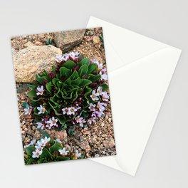 Alpine Spring beauty Colorado Stationery Cards