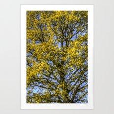 Summer Tree Art Texture Art Print